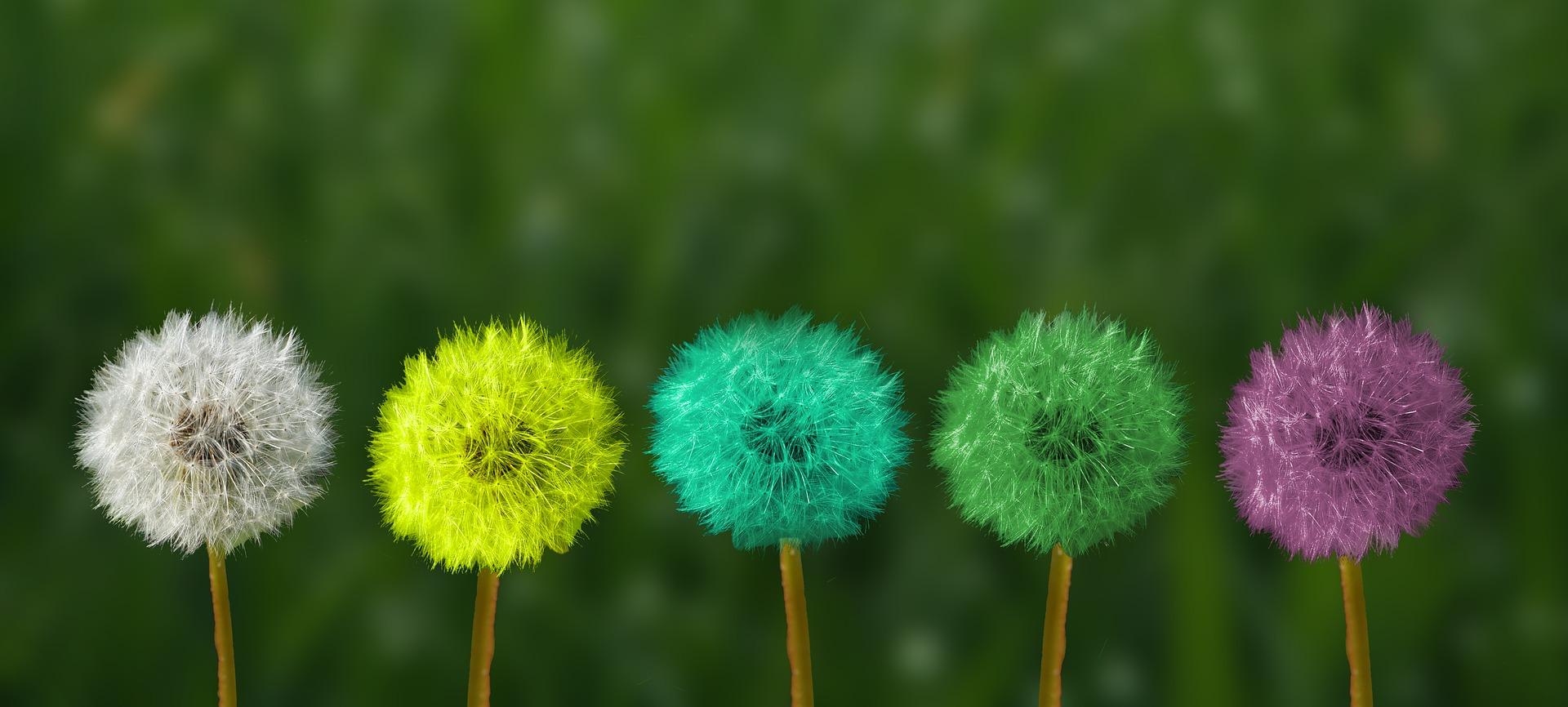 Harmonie op de werkvloer: 3 tips